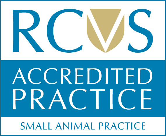 RCVS Accredited Small Animal Practice logo