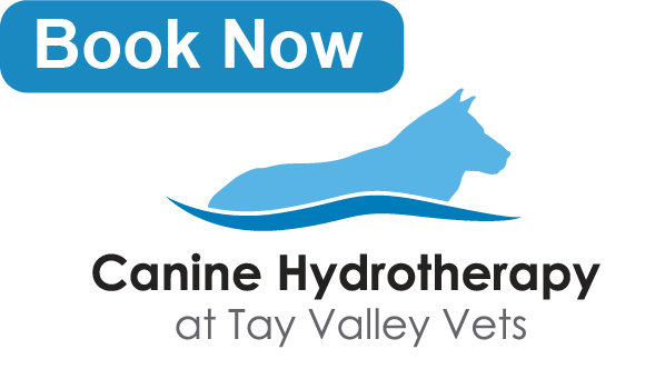 Tay Valley Vets Canine Hydrotherapy Now open graphic