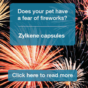 Tay Valley Vets Fireworks graphic panel