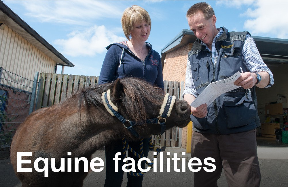 Tay Valley Vets Equine Facilities graphic panel. Woman getting shown her horses paperwork at Tay Valley Vets Equine Centre