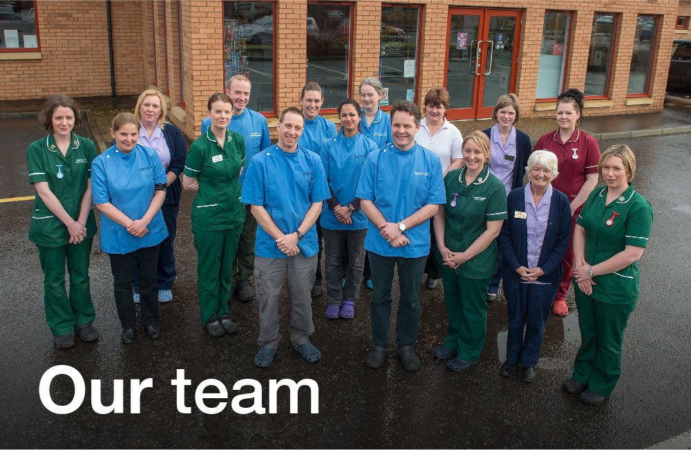 Tay Valley Vets Our team graphic panel. The Tay Valley Vets team outside the surgery