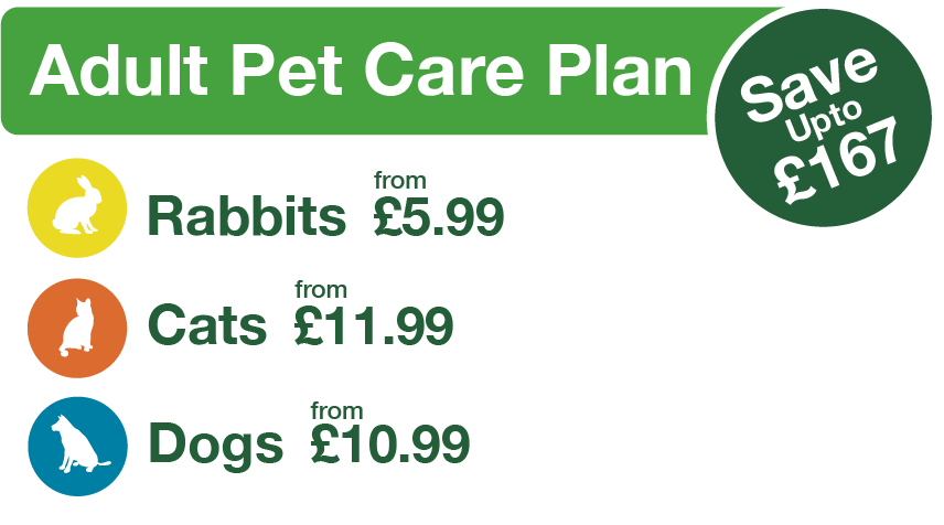 Adult Pet Care graphic with cats, dogs and rabbit prices