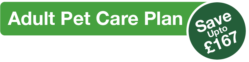 Adult Pet Care title graphic with green background and white text